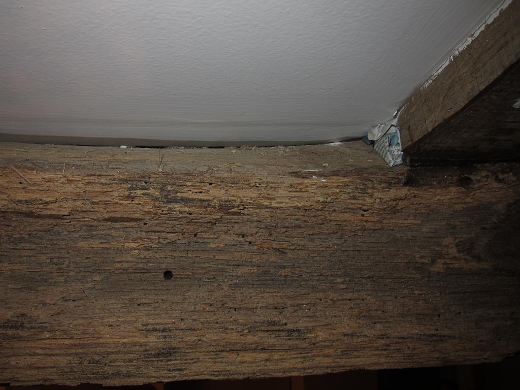 Habiller Une Poutre En Placo boucher espace entre poutre bois et plafond en pla