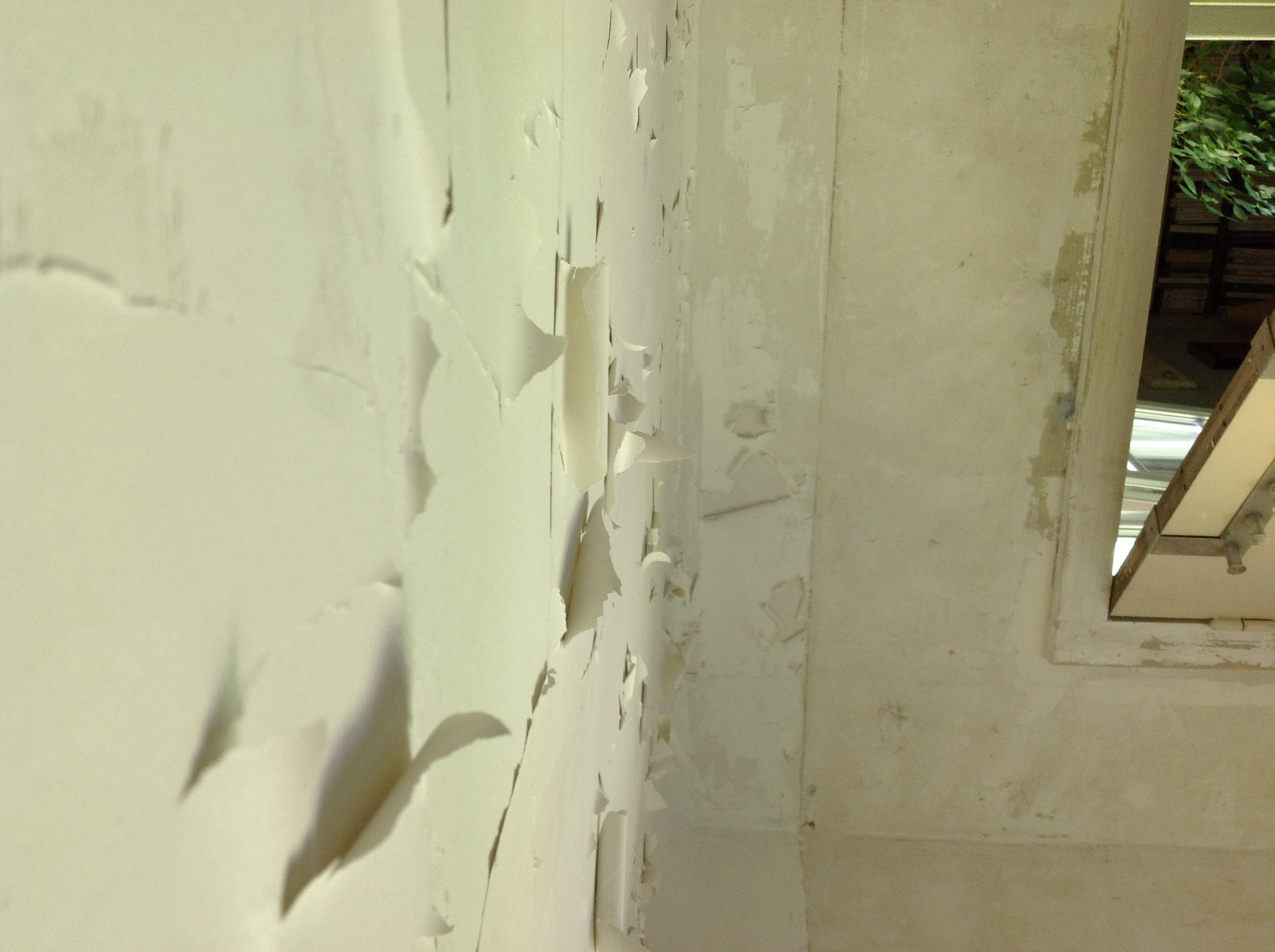 Ancienne Peinture Plafond Qui Gondole Communaute Leroy Merlin